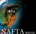 Nafta_4_issue