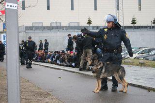 Copenhagen police arresting protestors
